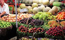 前八月新疆农产品出口同比增长20.3% 贸易额同比增长20.6%