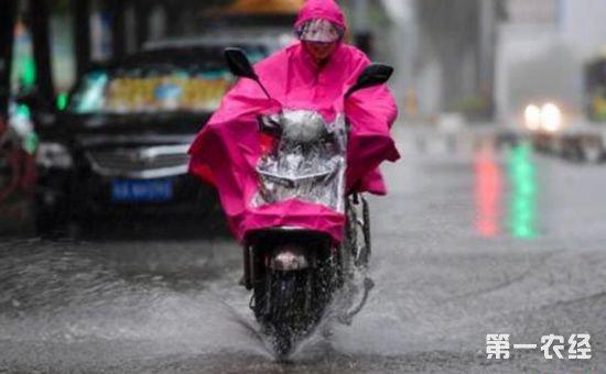 """台风""""卡努""""已致香港22名市民受伤"""