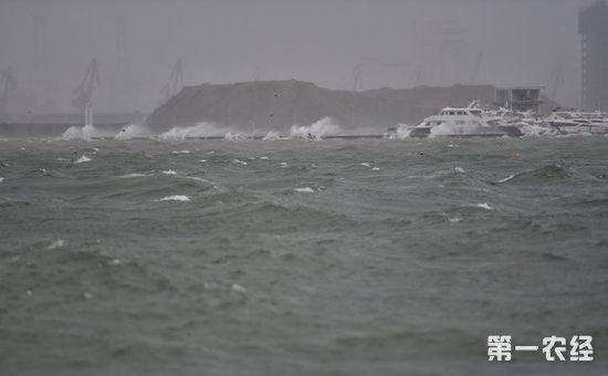 """""""卡努""""对海口影响基本结束 城市秩序基本恢复"""