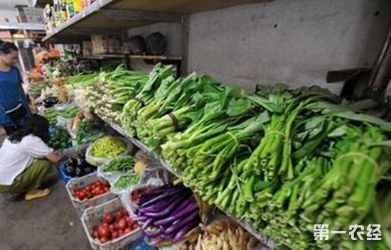 10月上旬山西太原蔬菜价格走势