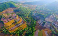 河南洛阳:着力推动美丽乡村建设