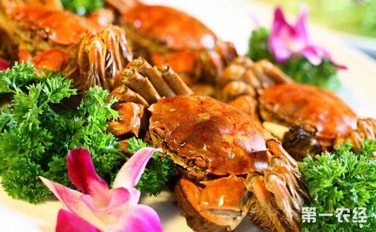 螃蟹和柿子相克同吃会导致腹痛腹泻?专家:不可信以为真