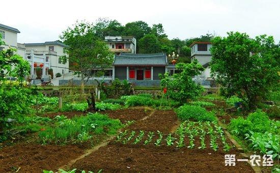 城中村改造拆迁补偿与村里的宅基地、耕地补偿能同时拿吗?