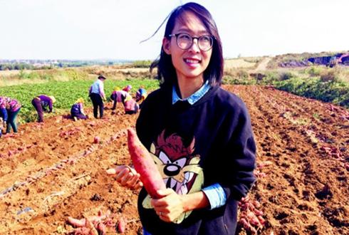 山东莱西小夫妻:从建筑厂商到地瓜农户 带领乡亲共同致富