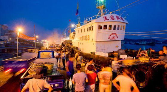 支渔惠渔政策:渔业油价补贴政策已初现成效
