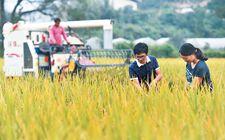 福建省48个家庭农场获得中央财政补助