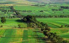 为什么说土地确权后,土地承包权长时间内不会有大调整?