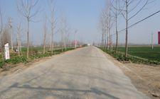 江苏农村公路里程数已超14万公里 占全省公路总里程90.2%