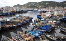 """台风""""苏拉""""向日本逐渐靠近 将给我国福建沿海带来大风天气"""