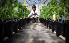 政府监管社会资本投入 PPP助力休闲农业发展