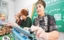 """新疆发展农村电商助力""""丝绸之路经济带"""""""