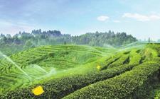 重庆:健全农业社会化服务体系 补足短板