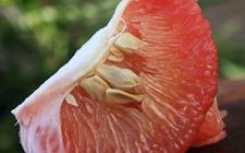 红心柚子是打针染上的吗?专家:打针瓜果不现实