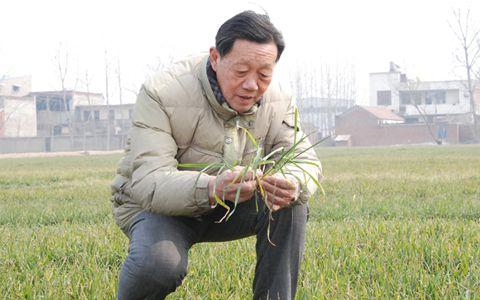 胡承霖:我只要身体允许 就一直与农业相伴