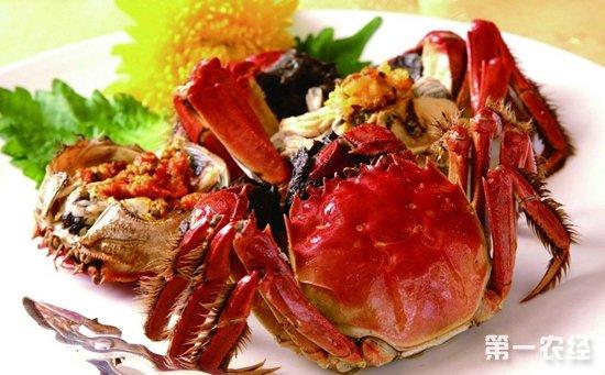 南宁:一市民因食用螃蟹不当导致腹泻腹痛  专家:螃蟹要煮熟煮透