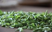 中国十大名茶之一:南京雨花茶
