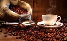 全球市场需求量增加 缅甸咖啡豆出口大幅增长