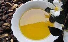 安徽:山茶油检出过氧化值超标 3批次不合格食品被通报