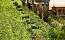 农机产业迅速发展的背后 智能农机装备是重要突破口
