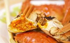 湘潭:一市民吃蟹不当引发急性肠炎 专家:螃蟹虽好不宜多吃
