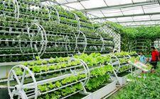 """首届全国""""互联网+""""现代农业新技术和新农民创业创新博览会即将举办"""