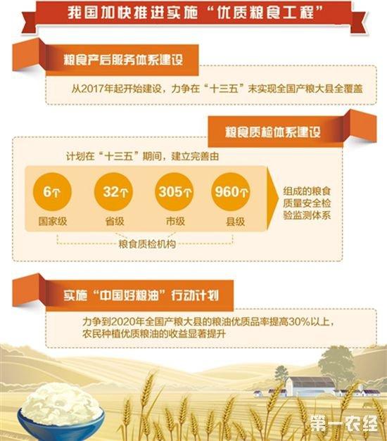 """""""优质粮食工程""""推动粮食生产由""""多产粮""""向""""产好粮""""转变"""