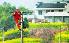 浙江黄岩:不断加大农村电网改造升级力度 为农民带来优质电力服务