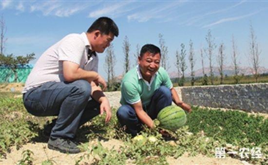 山东青岛为返乡农民工创建创业梦想大舞台