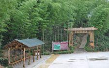 湖南桃江县:计划到2020年建设一到两家5A旅游景区