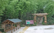 <b>湖南桃江县:计划到2020年建设一到两家5A旅游景区</b>