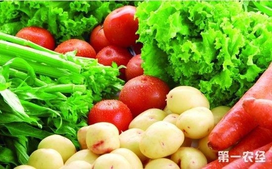 近日海口市连续强降雨 蔬菜市场供应足价格稳