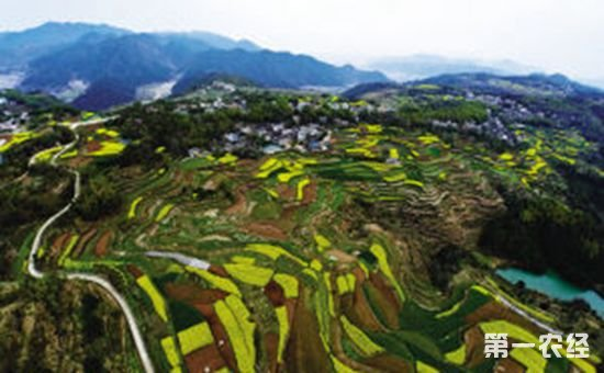 解读:《浙江省深化美丽乡村建设行动计划(2016-2020年)》
