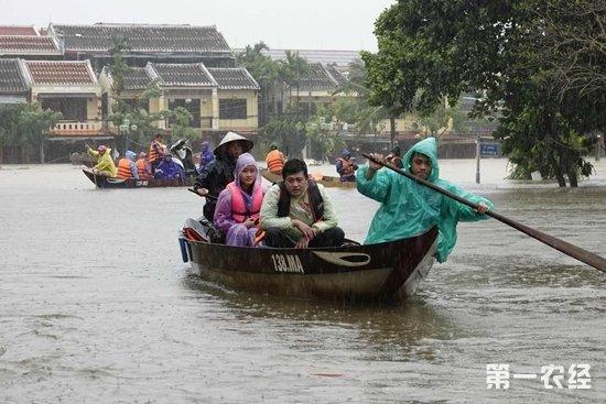 """越南台风""""达维""""已致89人死亡18人失踪"""