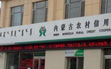 内蒙古农信社联合社创新金融服务产品和模式