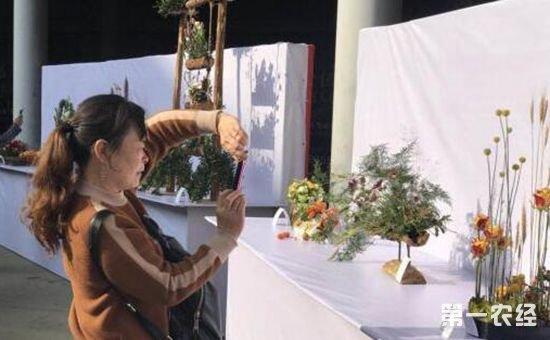 2017第十三届中国昆明国际农业博览会斗南分会场于昨日开幕