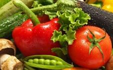 蔬菜种植过程中如何确定适宜的播种期和播种量?