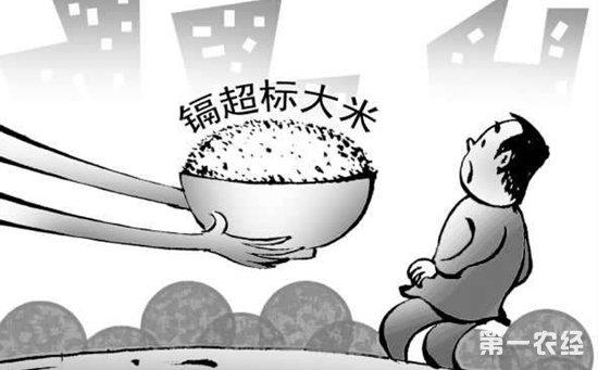 """江西九江:志愿者发现""""镉大米""""  污染源直指当地铜硫矿"""