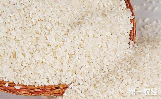 农业部发布今年全国名特优新农产品目录 连云港3种农产品入选