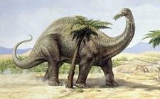 侏罗纪恐龙梁龙到底有多长?梁龙的栖息环境在哪里?