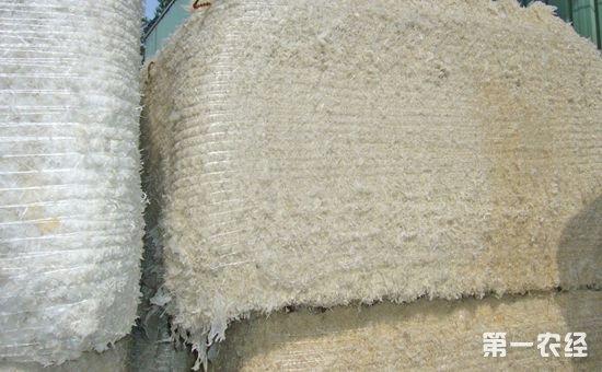 农业部推进农膜回收行动:要求整县推进综合治理