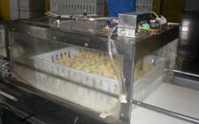 养鸡孵化场需使用哪些新型养鸡设备?
