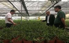<b>国内首个生物健康都市农业试验示范园在高陵落地</b>