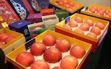 2017中国(烟台)苹果产销对接会于11月14日开幕