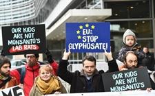 草甘膦除草剂欧盟许可延期搁浅