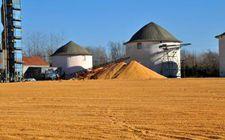 <b>内蒙古农发行已备足100亿元信贷资金 支持今年秋粮收购</b>