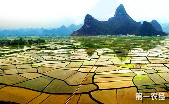 联合国粮农组织:农业是气候变化的受害者 也是气候变化的主要因素