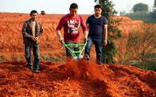 四川省纳溪区护国镇茶园机械化耕作管理