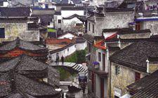 广西自治区深入推动传统村落保护模式创新