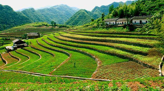 全国耕地保护工作会议:强化永久基本农田特殊保护