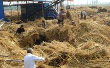 河北省贯彻农作物秸秆综合利用和禁烧情况 并开展执法检查